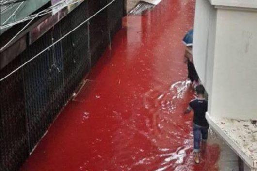 dhaka-bangladesz-krew-zabijanych-zwierzat-zabarwila-potoki-powodziowe-6