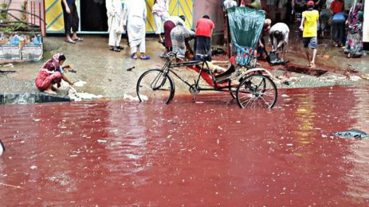 dhaka-bangladesz-krew-zabijanych-zwierzat-zabarwila-potoki-powodziowe-7