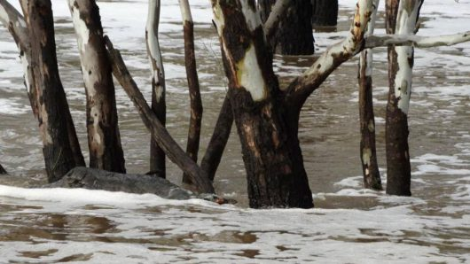powodz-w-australii-6