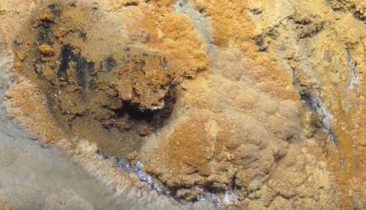 kilometr-pod-woda-na-dnie-zatoki-meksykanskiej-odkryto-toksyczne-solankowe-jezioro-jacuzzi-rozpaczy-3