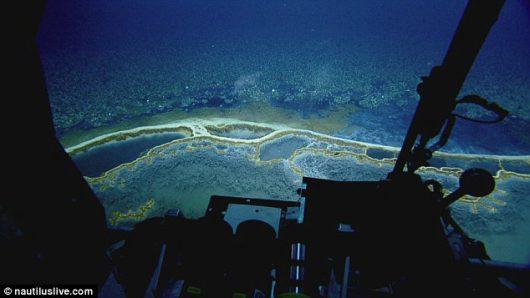 kilometr-pod-woda-na-dnie-zatoki-meksykanskiej-odkryto-toksyczne-solankowe-jezioro-jacuzzi-rozpaczy-5