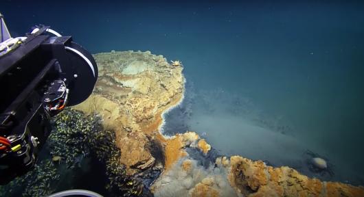 kilometr-pod-woda-na-dnie-zatoki-meksykanskiej-odkryto-toksyczne-solankowe-jezioro-jacuzzi-rozpaczy-6