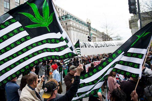 marihuana-usa-2