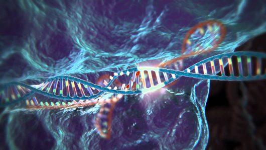 modyfikacja-genow-dna