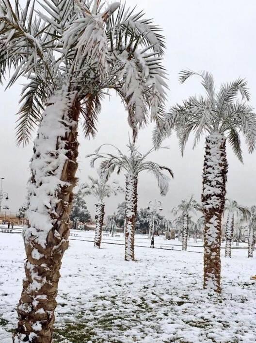 ogromna-anomalia-w-arabii-saudyjskiej-pustynia-zasypana-sniegiem-i-temperatury-ujemne-12