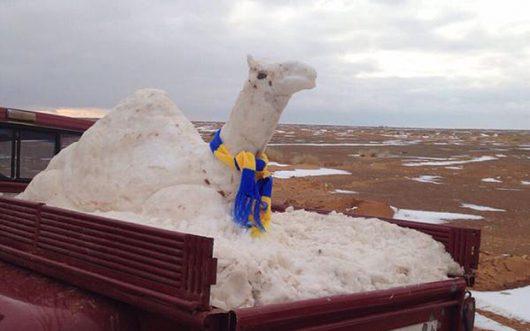 ogromna-anomalia-w-arabii-saudyjskiej-pustynia-zasypana-sniegiem-i-temperatury-ujemne-5