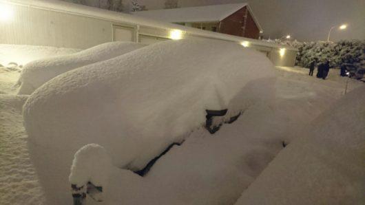 sztokholm-szwecja-duze-opady-sniegu-sparalizowaly-ruch-drogowy-2