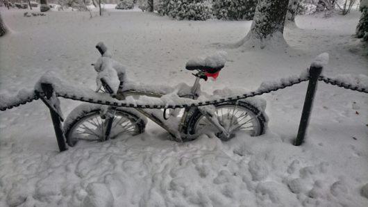 sztokholm-szwecja-duze-opady-sniegu-sparalizowaly-ruch-drogowy-5