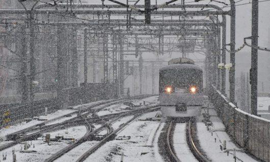 tokio-japonia-po-raz-pierwszy-od-54-lat-snieg-spadl-w-listopadzie-3