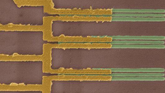 w-mit-polaczyli-szpinak-z-nanorurkami-czujniki-szpinakowe-beda-mogly-wykrywac-materialy-wybuchowe-2