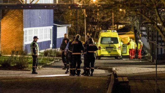 norwegia-nozownik-zabil-przedszkolanke-i-14-letniego-ucznia-w-kristiansand-4