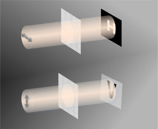 Schemat odczytu ukrytych treści z pomocą światła o danej długości fali i o róznej polaryzacji