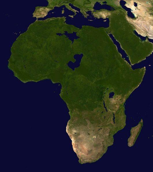 zielona-afryka