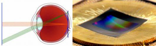 Opracowano nowy typ matrycy światłoczułej, która jest wklęsła podobnie jak siatkówka w ludzkim oku