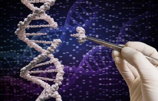 Zabezpieczony: Podjęto pierwszą w historii próbę zmiany DNA bezpośrednio w człowieku poprzez wstrzyknięcie miliardów kopii genów naprawczych, skutki mogą być nieprzewidziane
