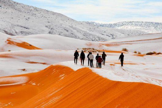 Afryka – Sahara zasypana śniegiem, miejscami zaspy na 40 cm