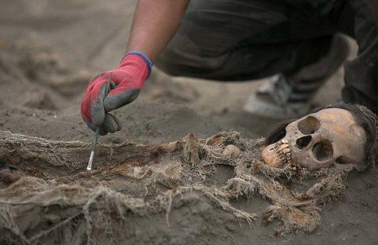 Trujillo, Peru – Znaleziono szczątki 109 dzieci i 200 zwierząt, sprzed ponad 1000 lat, prawdopodobnie składane były w ofierze