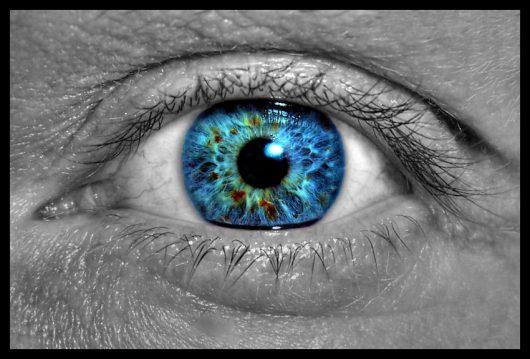 Zabezpieczony: Udało się zregenerować pręciki w oku