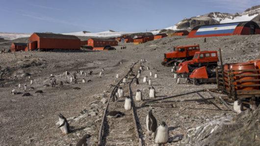WMO – Na Antarktydzie zarejestrowano absolutnie rekordowe +18.3°C
