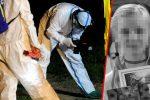 Mrowiny, Polska - Zabito 10-letnią dziewczynkę, zwyrodnialec zrobił to prawdopodobnie nożem, ciało znaleziono częściowo roznegliżowane w lesie niedaleko Imbramowic