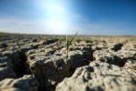 Polska - Wyjątkowo suchy kwiecień, złe prognozy na przyszłość