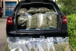 Niemcy - Wiózł samochodem worki wypchane marihuaną, wpadł gdy zepsuł się samochód, student akademii policyjnej wśród 10 osób zatrzymanych